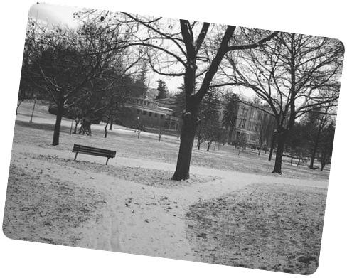 Congress Park Saratoga